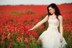 Stående av den härliga unga bruden i fält mycket av röda vallmo Arkivbilder