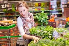 Stående av den härliga unga kvinnan som väljer den gröna lövrika grönsaken royaltyfria foton