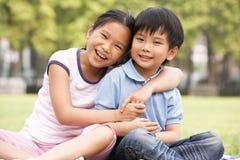 Stående av den kinesiska pojken och flickan som sitter i Park Arkivbild