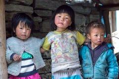 Stående av den lilla nepalesiska barngruppen i den avlägsna Himalaya byn Royaltyfri Foto