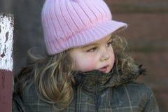 Rosa färg Arkivfoto