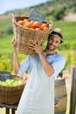 Stående av den lyckliga bonden som bär vid nya apelsiner i behållare arkivbild