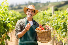 Stående av den lyckliga bonden som rymmer en korg av grönsaker royaltyfri foto