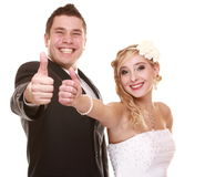 Stående av den lyckliga bruden och brudgummen på vit bakgrund Fotografering för Bildbyråer