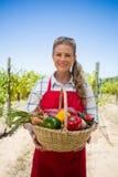 Stående av den lyckliga kvinnan som rymmer en korg av nya grönsaker Arkivfoto