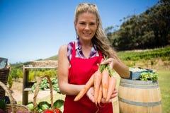 Stående av den lyckliga kvinnan som rymmer nya morötter på grönsakstallen Royaltyfria Bilder