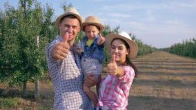 Stående av den lyckliga lantliga familjen med lilla barnet på händer som ger tummen upp anseende i fruktträdgård stock video