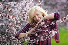 Stående av den lyckliga le Caucasian blonda kvinnan med trädet för plommon för långt hår det near blomstra körsbärsröda, inga tän Royaltyfria Foton