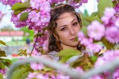 Stående av den nätta unga kvinnan med lockigt hår i blomningen av rosa blommor av sakura royaltyfri bild