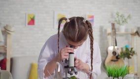 Stående av den tonårs- flickan som ser till och med ett mikroskop, ett skolaprojekt stock video