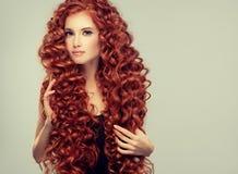 Stående av den unga attraktiva unga modellen med oerhört tätt, långt lockigt rött hår Burrigt hår royaltyfria foton