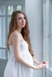 Stående av den unga gravida kvinnan Royaltyfri Fotografi