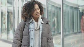Stående av den unga härliga kvinnan för blandat lopp med afro gå för frisyr stock video