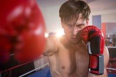 Stående av den unga manliga boxaren som öva i boxningsring Arkivbild