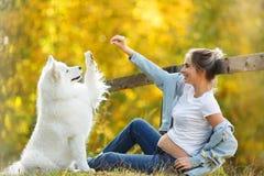 St?ende av en gullig gravid flicka som spelar med hennes husdjur - en stor vit hund i parkerar p? en sommareftermiddag p? solnedg royaltyfria foton