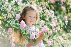 Stående av en gullig litet barnflicka som är utomhus- i en rosträdgård som luktar blommorna Arkivfoto
