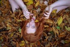 Stående av en gullig ung älskvärd flicka som täckas med röda och orange höstliga sidor Härlig sexig kvinna som ligger på höstsido royaltyfri fotografi