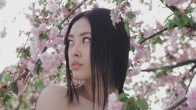 Stående av en härlig asiatisk flicka utomhus mot vårblomningträd stock video