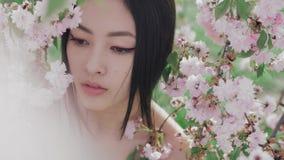 Stående av en härlig asiatisk flicka utomhus mot vårblomningträd lager videofilmer