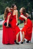 Stående av en härlig brudtärna för flicka tre in Royaltyfri Foto