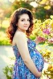 Stående av en härlig lockig haired gravid flicka i en blå klänning som hänsynsfullt står i träna bland Fotografering för Bildbyråer