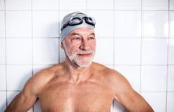 Stående av en hög man i en inomhus simbassäng royaltyfri fotografi