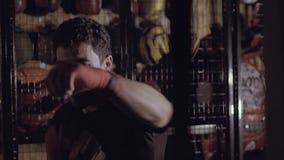 Stående av en koncentrerad boxare som aktivt utarbetar stock video