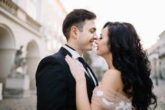 Stående av en romantisk härlig parhandelsresande som går i royaltyfri bild