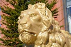 Stående av en stor guld- lejonstaty Royaltyfria Bilder
