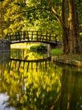 Stående av en träbro i en park arkivbild