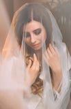 Stående av en ung dam i skyla royaltyfria bilder