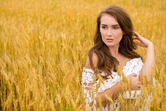 Stående av en ung flicka på en bakgrund av det guld- vetefältet royaltyfria foton