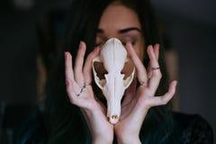Stående av en ung flicka som rymmer en mystisk skalle i händerna av en räv Målat långt hår royaltyfria foton