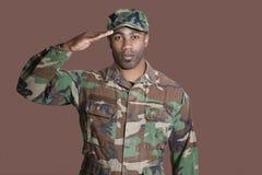 Stående av en ung soldat för afrikansk amerikanUSA som Marine Corps saluterar över brun bakgrund Royaltyfri Foto