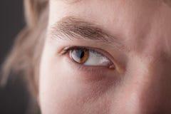 Stående av ett övre öga för stiligt manslut royaltyfria foton
