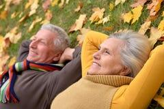 Stående av ett gulligt äldre par fotografering för bildbyråer
