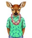 Stående av Fawn i en sommarskjorta med hawaianska Lei Fotografering för Bildbyråer