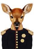 Stående av Fawn i militär likformig Royaltyfri Bild