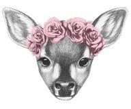 Stående av Fawn med den blom- head kransen Arkivfoto