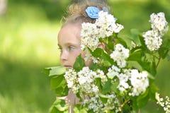 Stående av flickan med lilor Arkivfoto