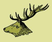 Stående av hjortar stock illustrationer