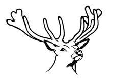 Stående av hjortar vektor illustrationer