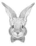 Stående av kanin med flugan royaltyfri illustrationer