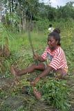 Stående av kvinnan under plockningjordnötter royaltyfri fotografi