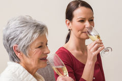 Stående av kvinnor som dricker champagne Arkivfoton