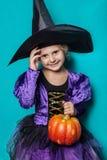 Stående av lilla flickan i kläder för svart hatt och häxamed pumpa halloween fe saga Studiostående på blå bakgrund Royaltyfria Bilder