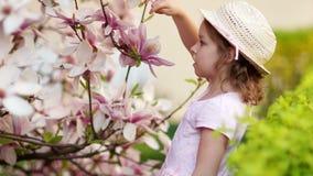 Stående av lite flickan i en trädgård av blommande magnolior stock video