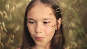 Stående av lite flickan i ett fält av högväxt gräs på solnedgången stock video