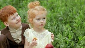 Stående av lyckliga barn som omfamnar sig på en picknick med en korg av frukt långsam rörelse lager videofilmer