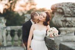 Stående av lyckliga brölloppar med huvudet - - head near slott Royaltyfria Bilder